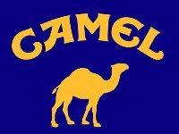 Camel (117)