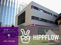Hippflow совместно сзарубежными ВУЗами запускает программу для студенческих стартапов (273)