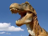 Иопять динозавры (41)