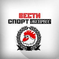 """Турецкие фанаты атаковали болельщиков """"Спартака"""" (24)"""