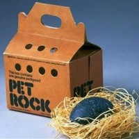 Идея на миллион, Pet Rock