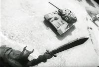 Последний полет жаворонка. Военная легенда (68)